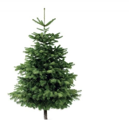 Jul på Godset